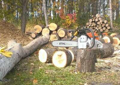 b-58039-142404-pilarz-wycinka-drzew-ciecie-drewna-opalowego